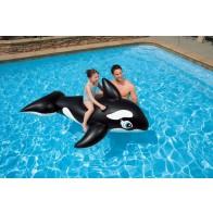 Opblaasbare walvis groot model