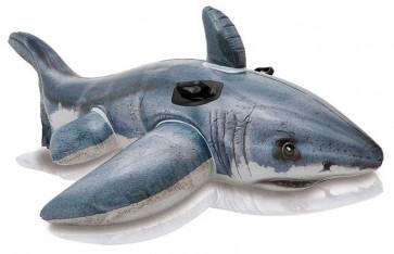 Intex Witte haai